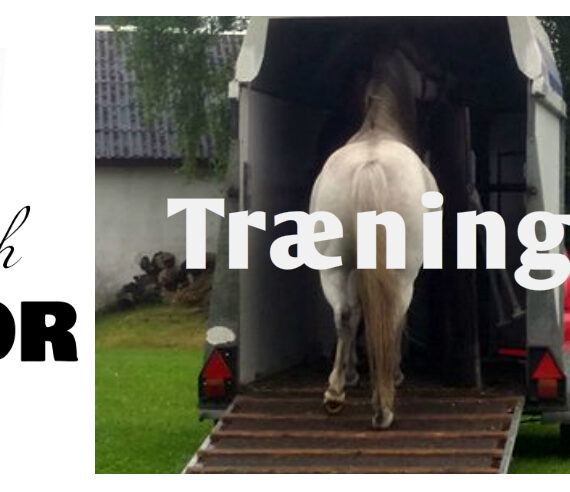 Adfærd: Når det er sjovt er det let, hvordan gør man trailerlæsning til en positiv opgave?
