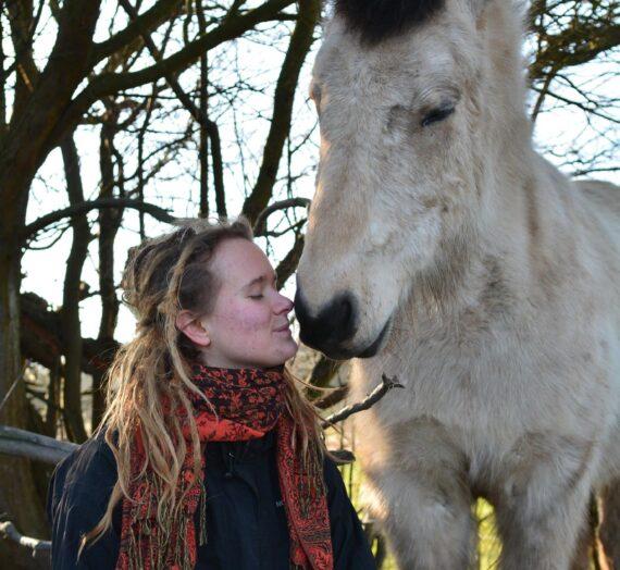 Psykologi: EquineTorch mentor Siri har skrevet et blog indlæg til jer om harmoniske idealer og autentisk samvær med heste