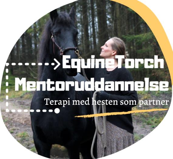 I morgen til midnat udløber din Early Bird Rabat på uddannelsen til EquineTorch mentor!