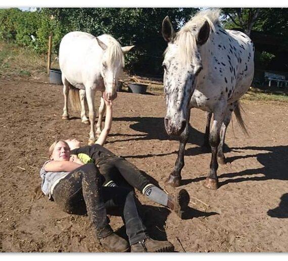 Det kunstige forhold til heste